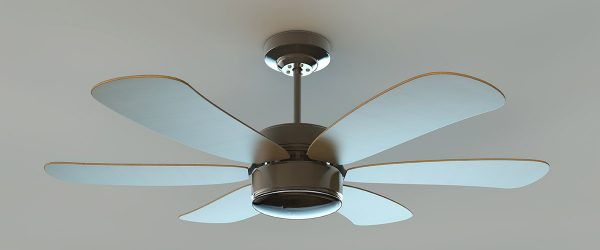 Fans Can Help You Feel Cool When the Heat Is On!